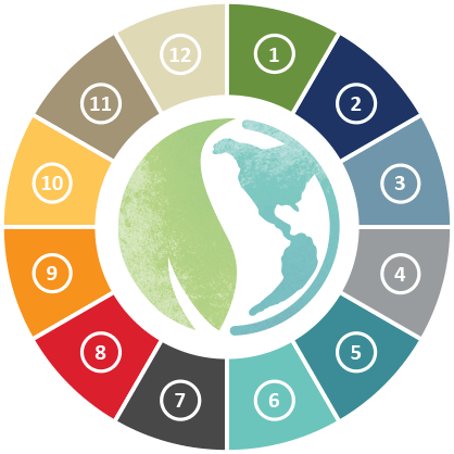 Sustainability Wheel